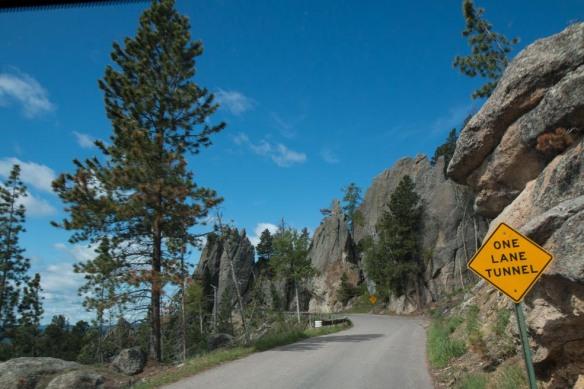Black Hills-25
