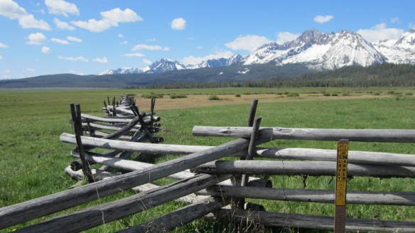 The fences were works of art