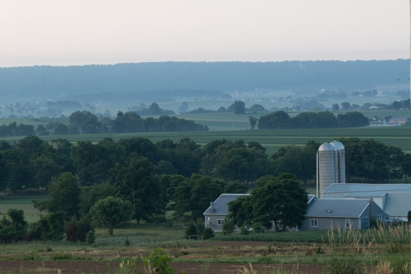 View of the gourd farm from the campground