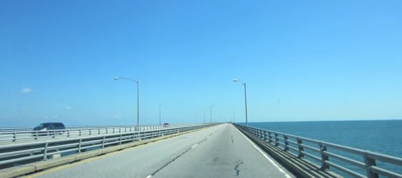 The very long bridge