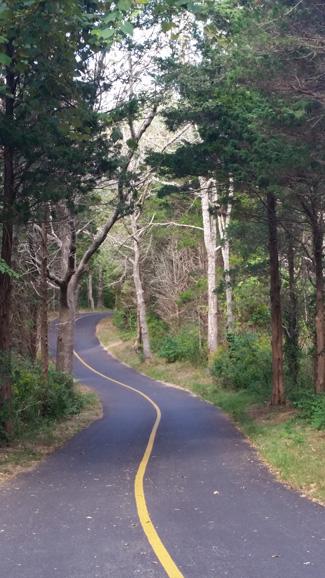 Bike path to Coast Guard Beach
