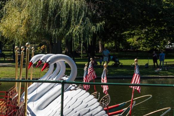 Public Garden's famous swan boats