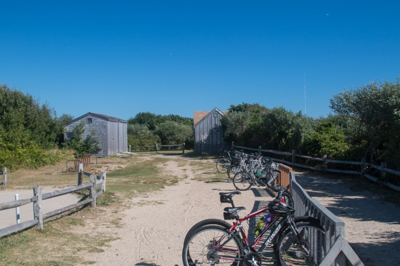 There are extensive bike paths on the Cape, including one to this beach.