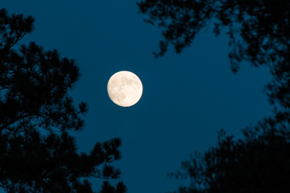The full moon as beautiful as anywhere else