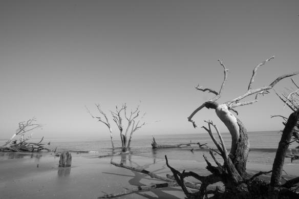 Hunting Island-119