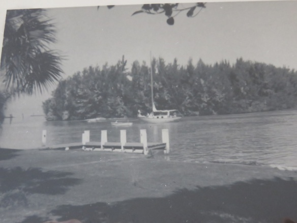 A 1959 view of Snake Island near the Venice jetty.