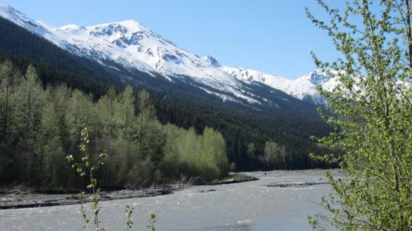 Cassiar Highway, Yukon Territory