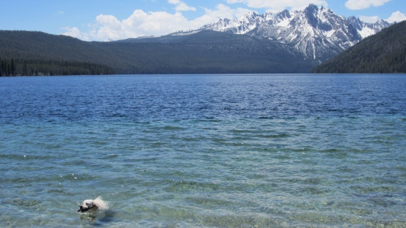 Idaho's Redfish lake--this was an unplanned visit, and it worked because it was in May.  Later in the season, it would have been packed.
