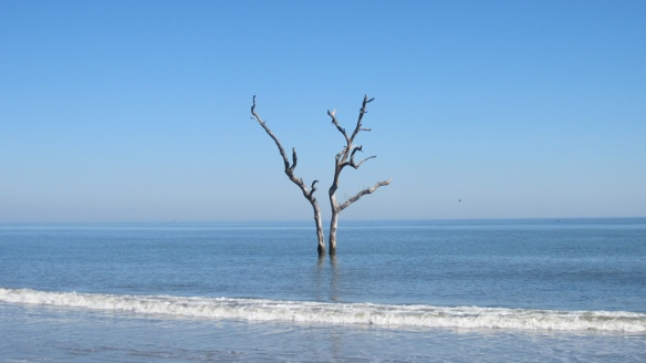 Hunting Island, South Carolina.