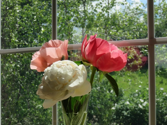 June garden bouquet of peonies and poppies