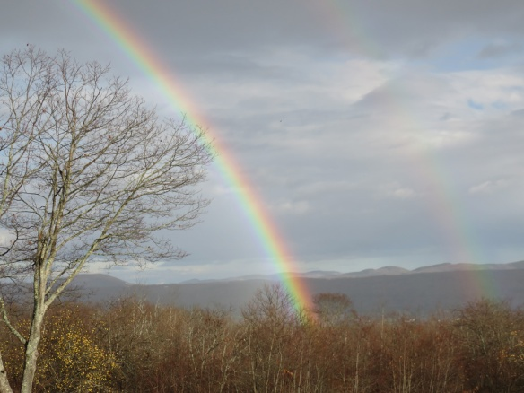This recent rainbow ended in our back woods.
