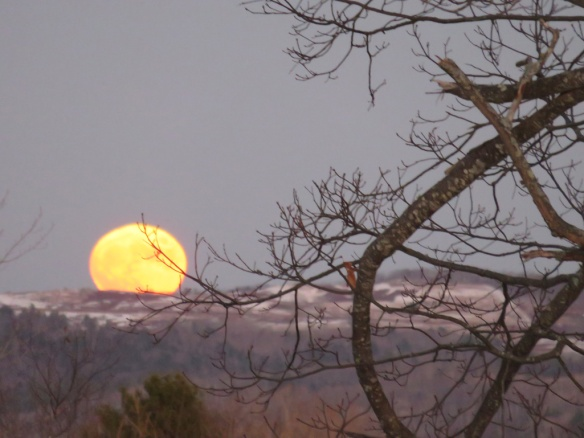 Moonrise Thanksgiving Eve. The moon's color was much redder. Like that next photo.